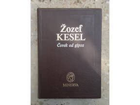 slika-Covek-od-gipsa-Zozef-Kesel-3318825