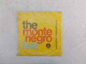 IN THE SUMMERTIME - THE MONTENEGRO FIVE - RTB