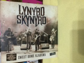 Lynyrd Skynyrd- sweet home Alabama live 1996 Loreley fe