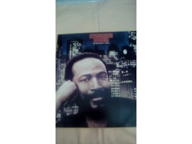 MARVIN GAYE-MIDNIGHT LOVE