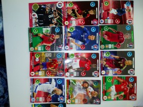 OFICIAL TRADING CARDS