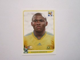 Slicica PANINI FIFA WC 2010 SOUTH AFRICA br. 40