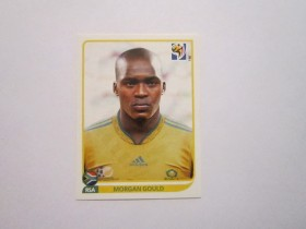 Slicica PANINI FIFA WC SOUTH AFRICA 2010 br. 36