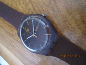 Swatch sat braon