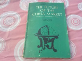 THE FUTURE OF THE CHINA MARKET