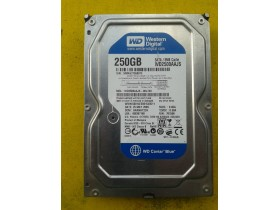 WD Caviar Blue 250 GB - 3.5""