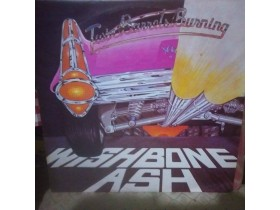 WISHBONE ASH mint