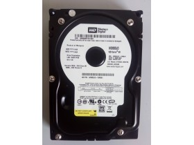 Western Digital WD800JD 80gb Sata 100/100 1 dan