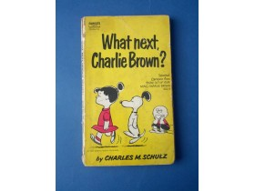 What Next Charlie Brown