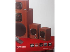 Genius Wooden Surround speaker syistem