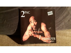 2 PAC - The Singles (Tribute)