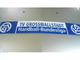 SAL TV GROSSWALLSTADT HANDBALL BUNDESLIGA